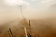"""A power pole and power lines strain against wind gusts Wednesday near Culver, Ore. as dust is blown from a farm field over an irrigation pipe and road. A drought in Central Oregon could be nicknamed after the '20's midwest phenomenon """"Dust Bowl"""" reflecting on soils drying up, plant cover dying and wind erosion stripping the land of topsoil and filling the air with particles. The Bulletin/Rob Kerr"""