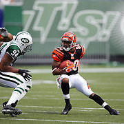 2004 Bengals at Jets