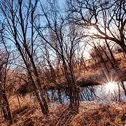 Rural wooded area and a small pond outside of Pratt, Kansas in winter.