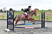 71 - 09th Dec - Christmas Show Jumping