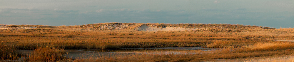 Late autumn's golden light glows on the dunes of Crowe's Pasture conservation area.