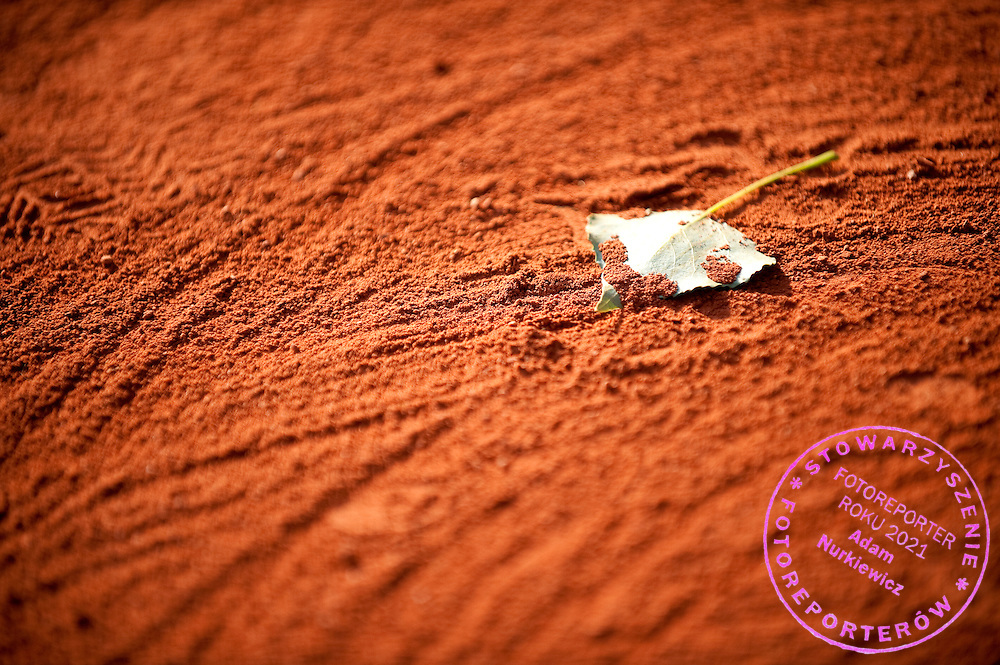 Leaf on the clay court while Day Seventh during The French Open 2013 at Roland Garros Tennis Club in Paris, France.<br /> <br /> France, Paris, June 01, 2013<br /> <br /> Picture also available in RAW (NEF) or TIFF format on special request.<br /> <br /> For editorial use only. Any commercial or promotional use requires permission.<br /> <br /> Mandatory credit:<br /> Photo by © Adam Nurkiewicz / Mediasport
