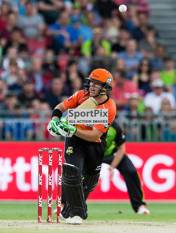 KFC Big Bash League T20 2015-16 , Sydney Thunder v Perth Scorchers, Spotless Stadium; 7 January 2016<br /> Perth Scorchers Marcus Harris skies a ball from Sydney Thunder Clint McKay