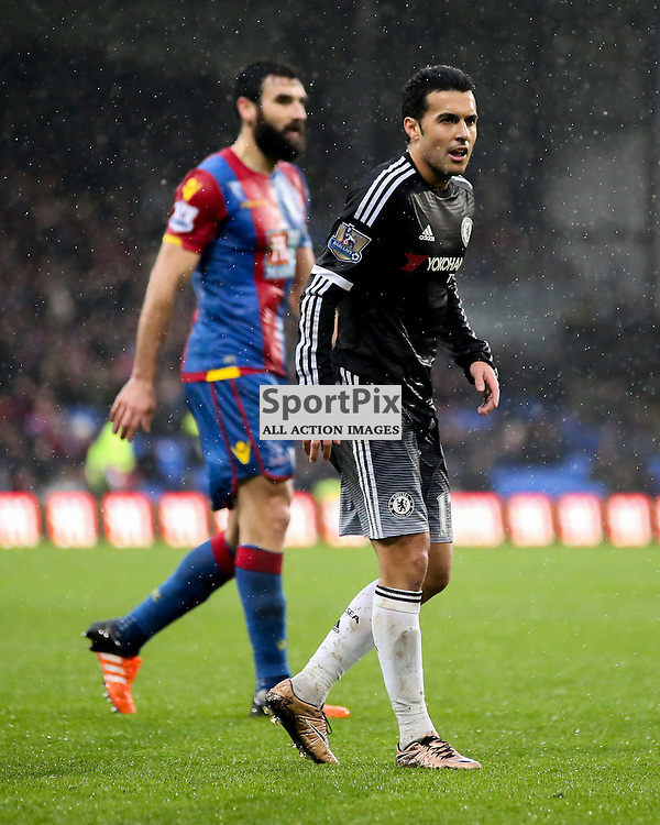 Pedro During Crystal Palace vs Chelsea Sunday 3rd January 2016