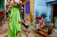 Inde, Rajasthan, Jodhpur la ville bleue // India, Rajasthan, Jodhpur the blue city