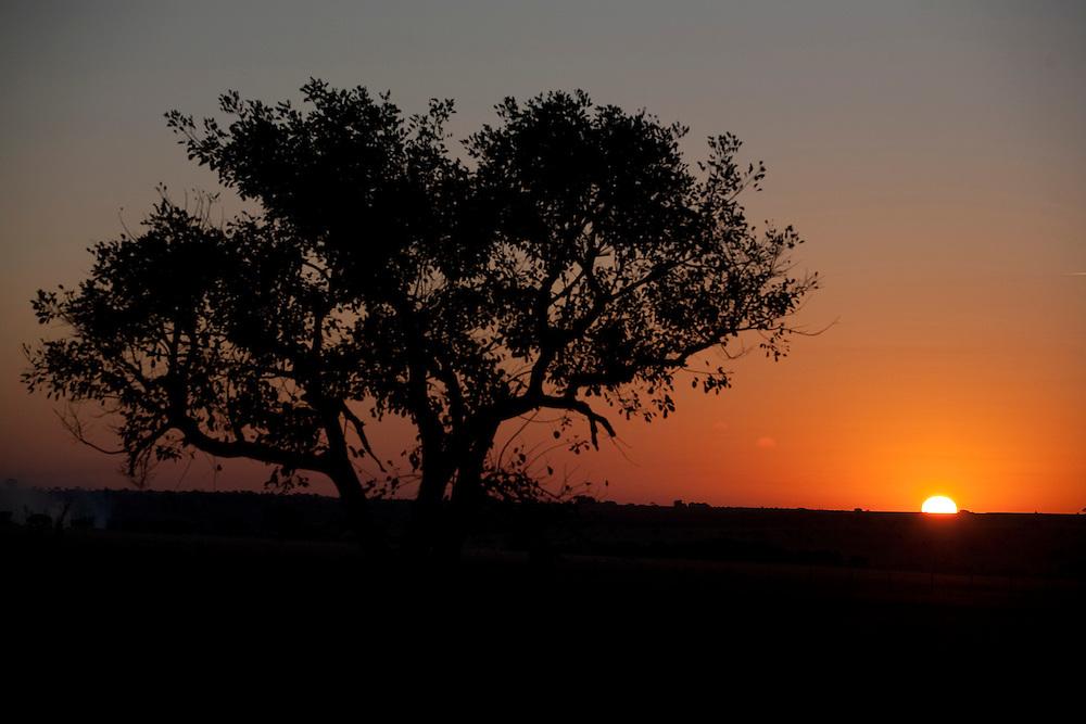 Frutal_MG, Brasil...Amanhecer em Frutal, Minas Gerais...The daybreak in Frutal, Minas Gerais...Foto: LEO DRUMOND / NITRO