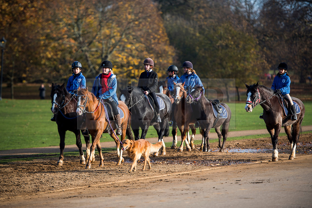 © Licensed to London News Pictures. 26/11/2016. London, UK. A group of young women riding horses while walking a dog on a bright and sunny Autumn morning in Hyde Park, London. Photo credit: Ben Cawthra/LNP