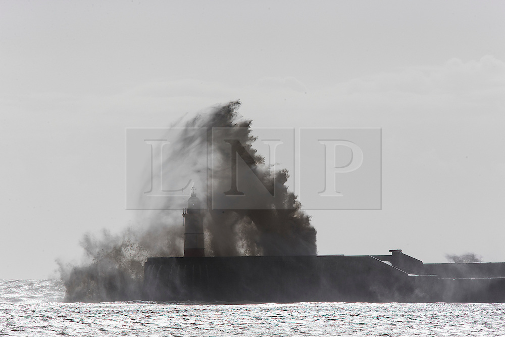 &copy; London News Pictures. Newhaven, UK. 15/02/2014.<br /> Waves dwarf the lighthouse at Newhaven as winds continue to hit the south coast of the country. Photo credit: London News Pictures