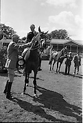 """08/08/1962<br /> 08/08/1962<br /> 08 August 1962<br /> Dublin Horse Show at the RDS, Ballsbridge, Wednesday. <br /> Picture shows Col. G.T. Hupper O.B.E. of Harston near Cambridge, juror, presenting the Supreme Champion Rosette to """"Badna Bay"""", owned by the Duchess of Westminster, Bryanstown, Maynooth, Co. Kildare and shown by Capt. E. Glen Browne, Master of the Hunt, Cork."""