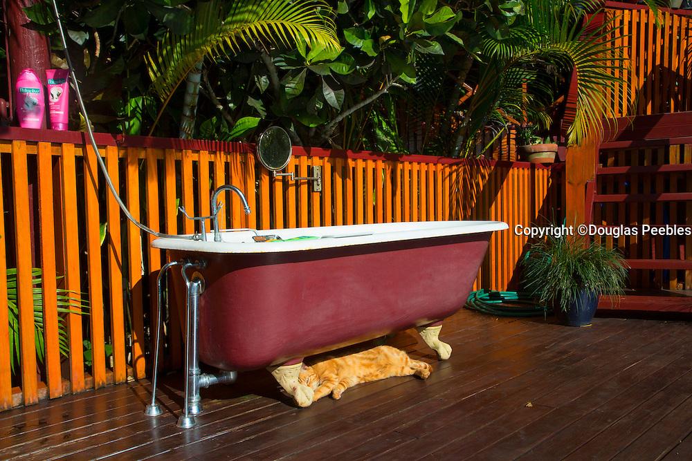 Claw footed bathtub, Fiji