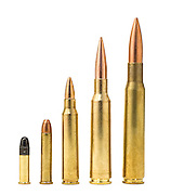 Ammunition for rifle or shotgun
