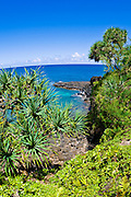 Tropical foliage and blue Pacific waters at Hideaways Beach, Princeville, Island of Kauai, Hawaii
