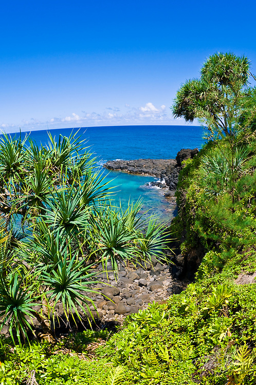 Tropical foliage and blue Pacific waters at Hideaways Beach, Princeville, Island of Kauai, Hawaii