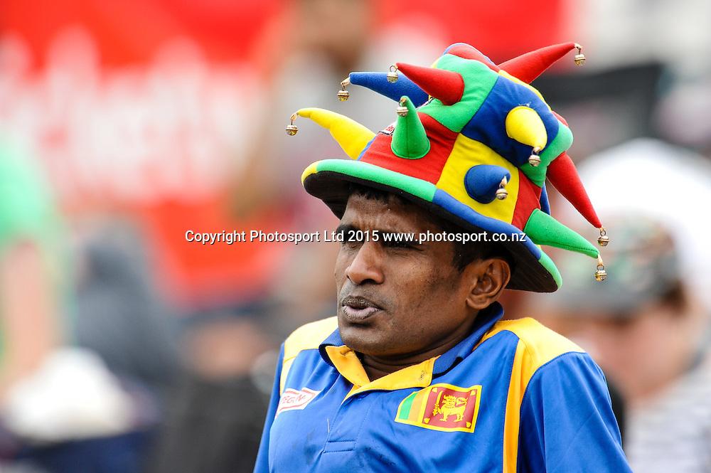 a fan in the first ODI, Black Caps v Sri Lanka, at Hagley Oval, Christchurch, 11 January 2015. Photo:John Davidson/www.photosport.co.nz