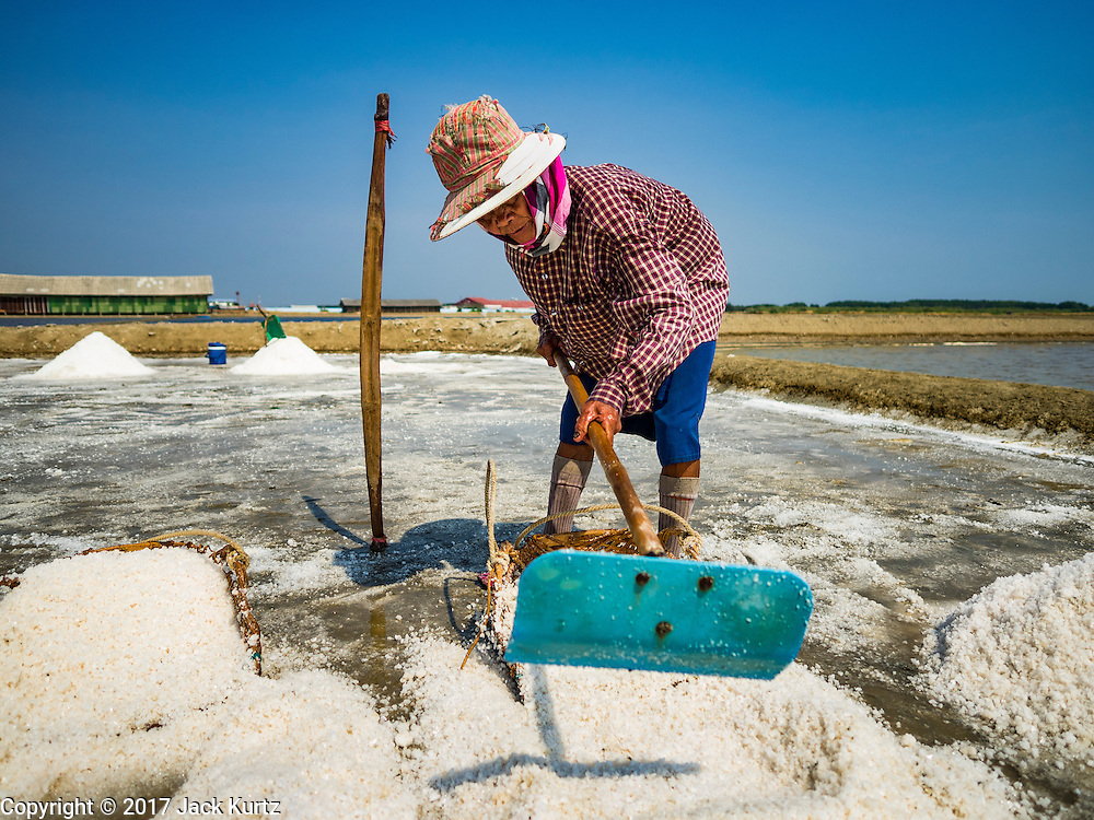 22 FEBRUARY 2017 - BAN LAEM, PETCHABURI, THAILAND: A worker pushes salt into her basket during the salt harvest in Petchaburi province of Thailand, about two hours south of Bangkok on the Gulf of Siam. Salt is collected in coastal flats that are flooded with sea water. The water evaporates and leaves the salt in large pans. Coastal provinces south of Bangkok used to be dotted with salt farms, but industrial development has pushed the salt farms down to remote parts of Petchaburi province. The harvest normally starts in early February and lasts until early May, but this year's harvest was delayed by a couple of weeks because of unseasonable rain in January that flooded many of the salt collection ponds.    PHOTO BY JACK KURTZ