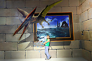 SHENYANG, CHINA - JULY 29: (CHINA OUT)<br /> <br /> 3D Art Exhibition<br /> <br /> A boy poses with an 3D painting on July 29, 2014 in Shenyang, Liaoning province of China.<br /> ©Exclusivepix