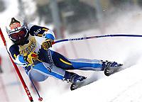 Alpint: 22.12.2001 St.Moritz, Schweiz,<br />Die Italienerin Daniela Ceccarelli am Samstag (22.12.2001) beim Ski Alpin Weltcup Super-G der Damen im schweizerischen St.Moritz.<br /><br />Foto: Digitalsport