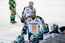 Team EHC Liwest Linz celebrate during ice-hockey match between HDD Tilia Olimpija and EHC Liwest Black Wings Linz in 51st Round of EBEL league, on Februar 5, 2012 at Hala Tivoli, Ljubljana, Slovenia. (Photo By Matic Klansek Velej / Sportida)