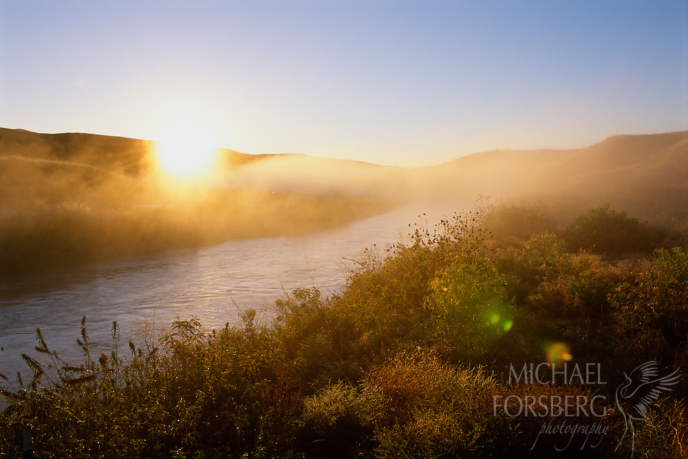 Sunrise through fog on the Loup River in the Nebraska Sandhills.