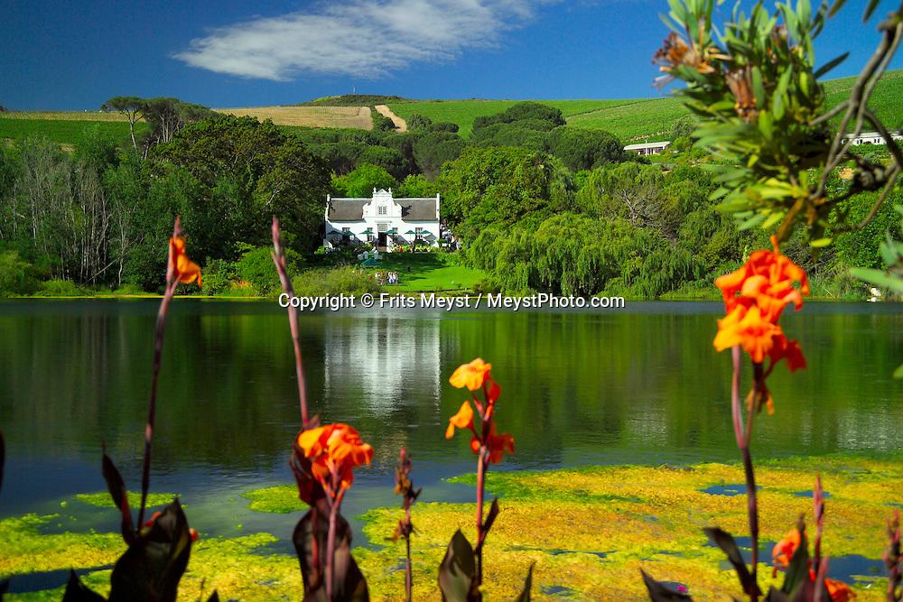 STELLENBOSCH, SOUTH AFRICA, NOVEMBER 2004. Zevenwacht Wine Estate. The Stellenbosch region is crammed with some of the best wine estates in the world. Photo by Frits Meyst/Adventure4ever.com