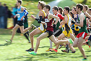 2013 WOSSA Cross Country