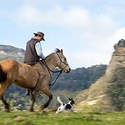 rivervalley adventure lodge rangitikei