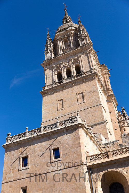Cathedral in Salamanca, Spain