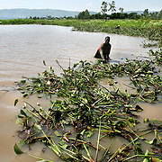 Monica Juma, fishes for mudfish. Mud fish, used for bait, have appeared in Lake Victoria for the first time because of the water hyacinth infestation. Pollution of the lake is causing water hyacinth to grow out of control and is a sign of the environmental problems affecting the lake.