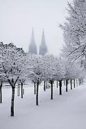 view from the Rhinegarden to the cathedral, snow, winter, Cologne, Germany.<br /> <br /> Blick vom Rheingarten zum Dom, Schnee, Winter, Koeln, Deutschland