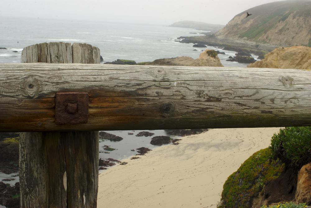 Bodega Bay coast