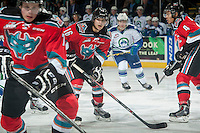 KELOWNA, CANADA - OCTOBER 7:  Kris Schmidli #16 of Kelowna Rockets looks for the puck against the Swift Current Broncos on October 7, 2014 at Prospera Place in Kelowna, British Columbia, Canada.  (Photo by Marissa Baecker/Getty Images)  *** Local Caption *** Kris Schmidli;