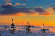 Winter along the Hudson Bay Coastline<br />