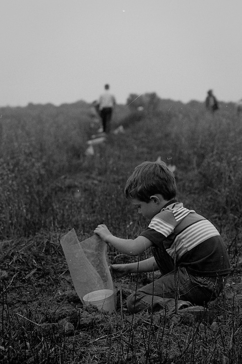 Aaron planting acorns on the Consumnes River Prserve