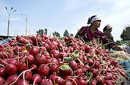 radish seller in tajikistan