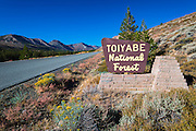 Entrance sign, Toiyabe National Forest, Sierra Nevada Mountains, California USA