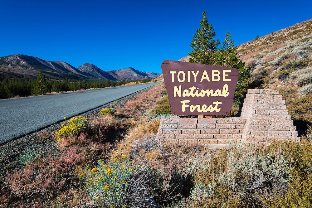 Entrance sign, Toiyabe National Forest, Sierra Nevada Mountains, California USA