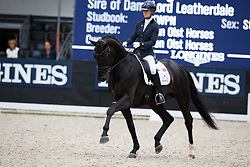 Fry Charlotte, GBR, Don Joe<br /> Longines FEI/WBFSH World Breeding Dressage Championships for Young Horses - Ermelo 2017<br /> © Hippo Foto - Dirk Caremans<br /> 03/08/2017