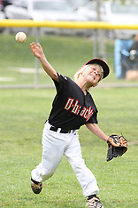 Little league baseball sample