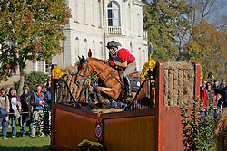 Van Beek Jan - Vitis<br /> World Championship Young Eventing Horses<br /> Le Lion d'Angers 2008<br /> Photo © Hippo Foto