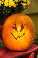 Halloween traditional jack-o-lantern, carve pumpkin.