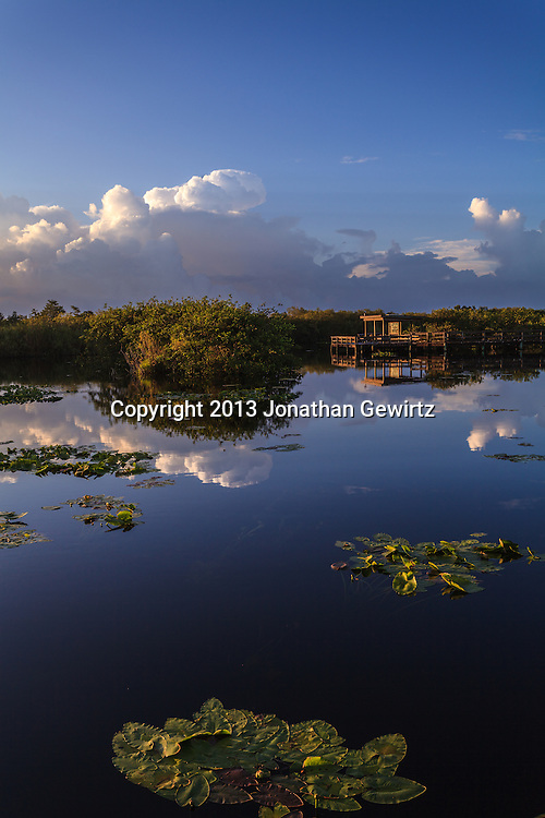 Morning at Taylor Slough on the Anhinga Trail in Everglades National Park, Florida. <br />