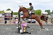 30 - 16th Apr - Easter Sunday Show Jumping