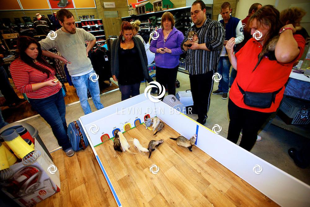 ZALTBOMMEL - Bij de Wellkoop zijn de Olympische Spelen voor fretten georganiseerd door frettenvereniging Frettig Gestoord. FOTO LEVIN DEN BOER - PERSFOTO.NU