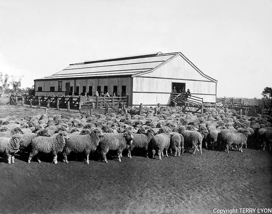 1927 Farm photograph restoration