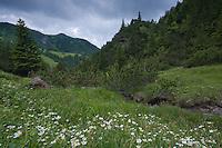 Landscape near Malbun, Lichtenstein