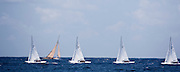 Dragon fleet sailing in the Old Road Race at the Antigua Classic Yacht Regatta.