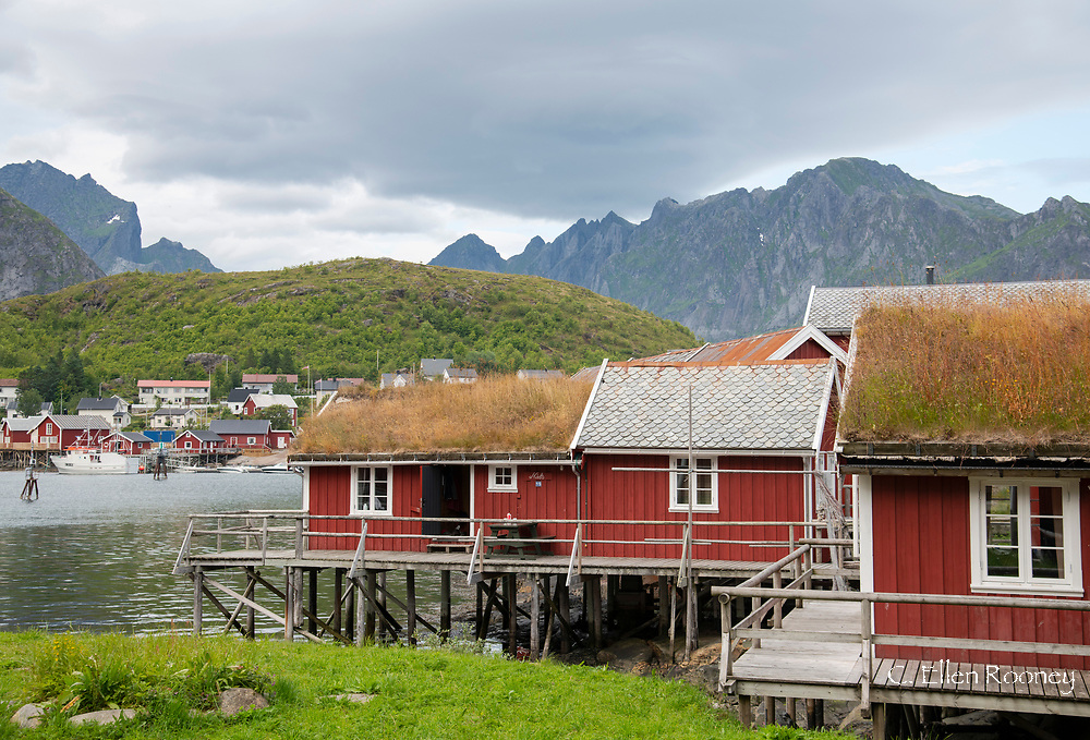 Rorbu, fisherman's cabin's in Reine, Moskenesoy, Lofoten Islands, Norway