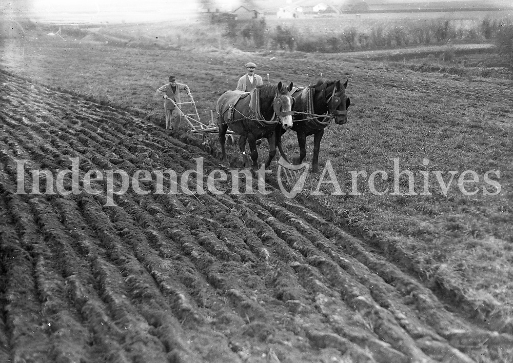 Ploughing land with horses. (Part of the Independent Ireland Newspapers/NLI Collection)