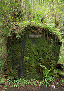 Sign showing the age of a cut log along the Redwood Creek Trail in Redwood National Park, California.