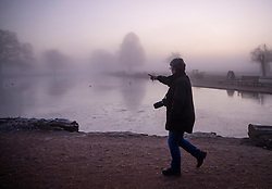 © Licensed to London News Pictures. 06/02/2020. London, UK. An early riser walks past the pond on a misty morning in Bushy Park, south west London. After a period of clear and cold days, rain and wind are forecast for the next few days as the UK feels the effects of Storm Ciara. Photo credit: Peter Macdiarmid/LNP
